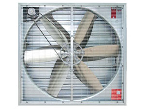 Cow cattle farming cooling fans